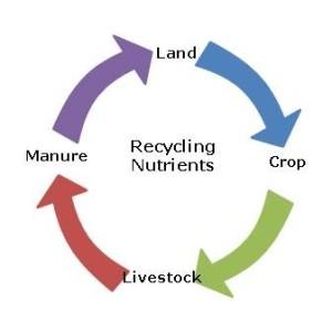 Recycling Neutrients